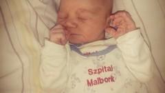 Jestem Grzesiu, urodziłem się w Malborku.