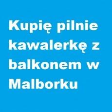 Kupię pilnie kawalerkę z balkonem w Malborku